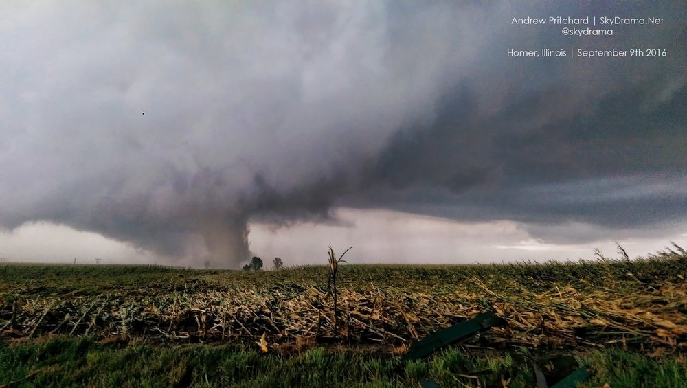 Image taken by Andrew Pritchard in Homer, IL, September 9th 2016