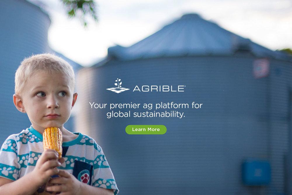 hero_sustainable3.jpg