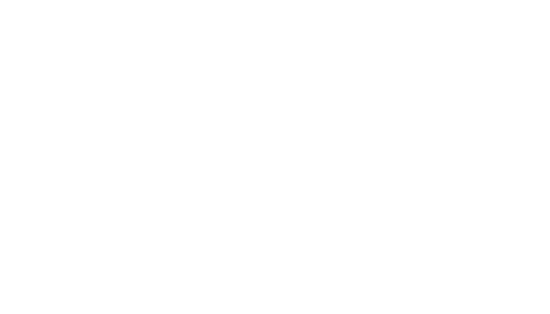 Tulchina Adventures, LLC