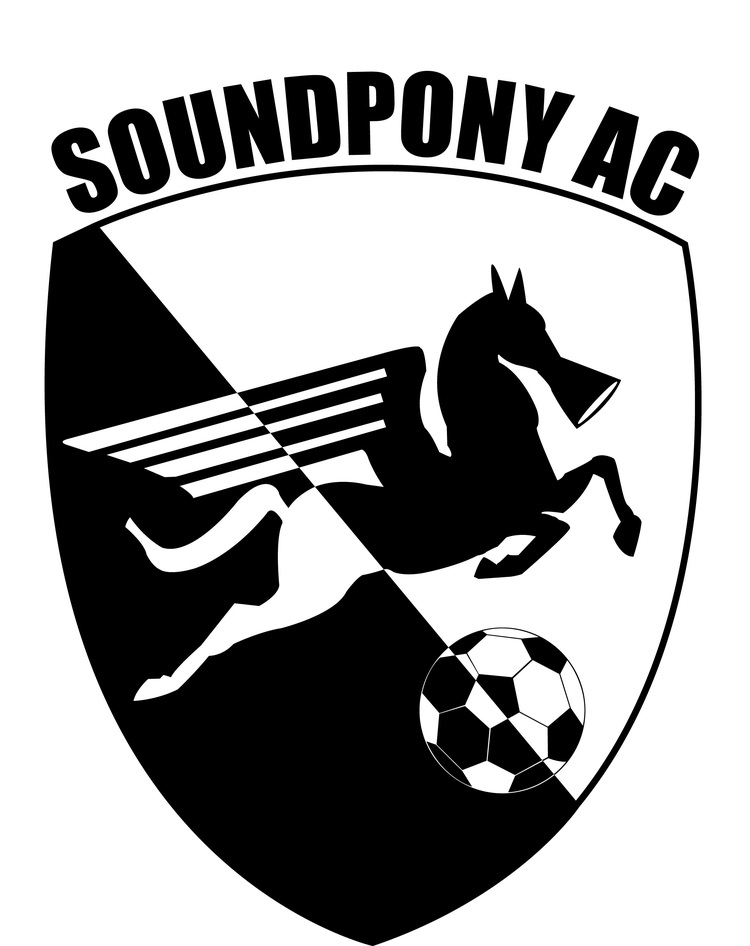 1064e065c8c431 Soundpony Soccer Decal Black.jpg