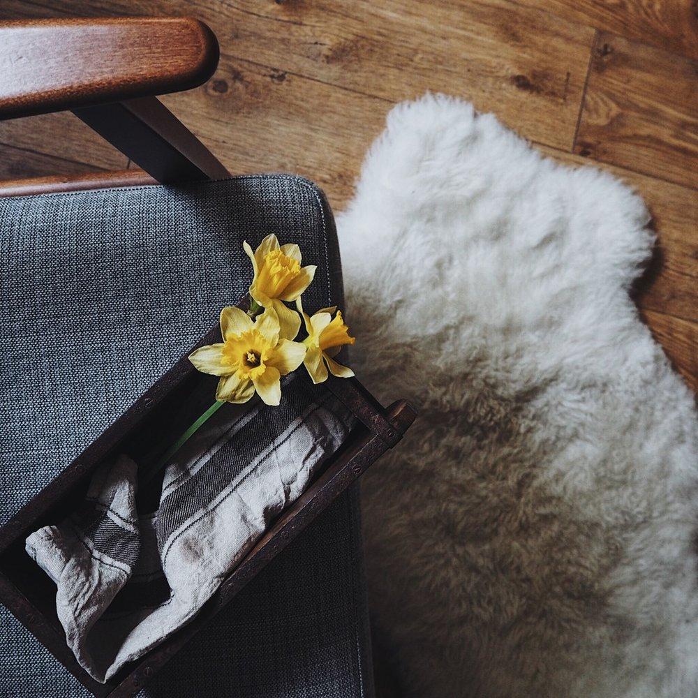 Daffodils on the corner of an armchair.jpg