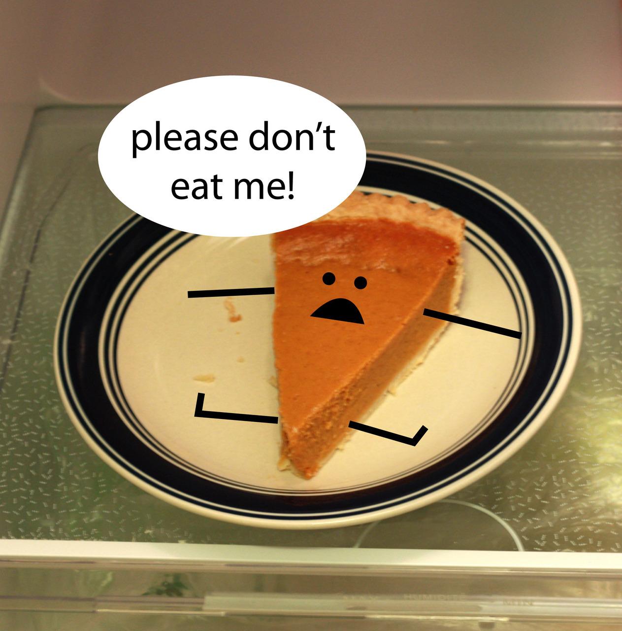The last slice of pumpkin pie sitting in my fridge. So sad.