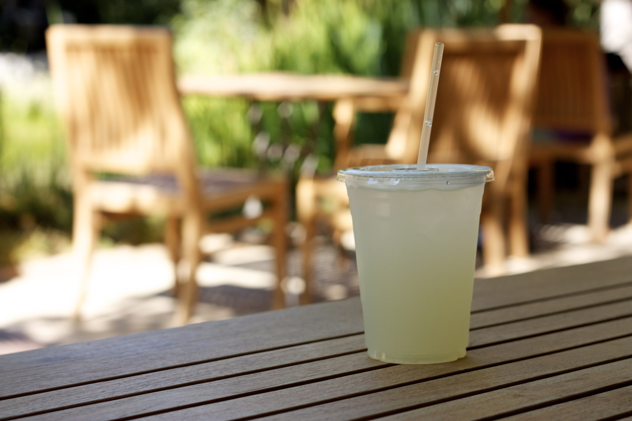 Fresh squeezed lemonade @  Garden Cafe at the Norton Simon  in Pasadena, CA    Whenever I go home, I always make a trip to the Norton Simon. I love spending my afternoons in the Cali sunshine with a good book in a garden full of Rodin sculptures. Sounds pretentious, but it really is lovely!