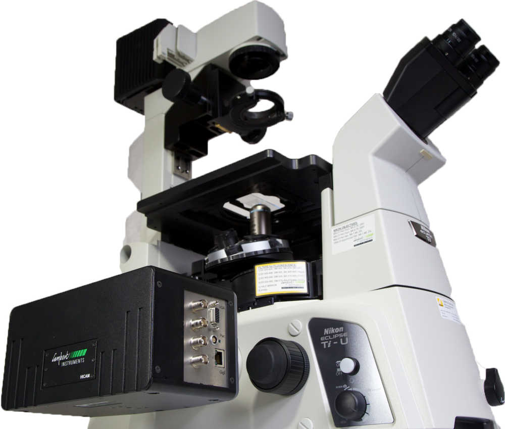 Figure 2. HiCAM attached to fluorescence microscope.