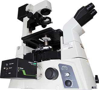 Introducing a Time-Domain FLIM Solution for Widefield Microscopes