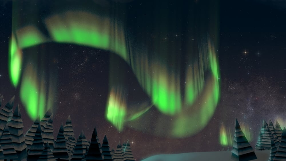 Zoo Lights Elephant Northern Lights Concept