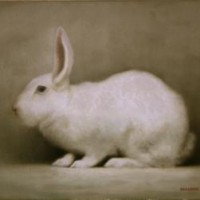 rabbit310x12in-200x200.jpg