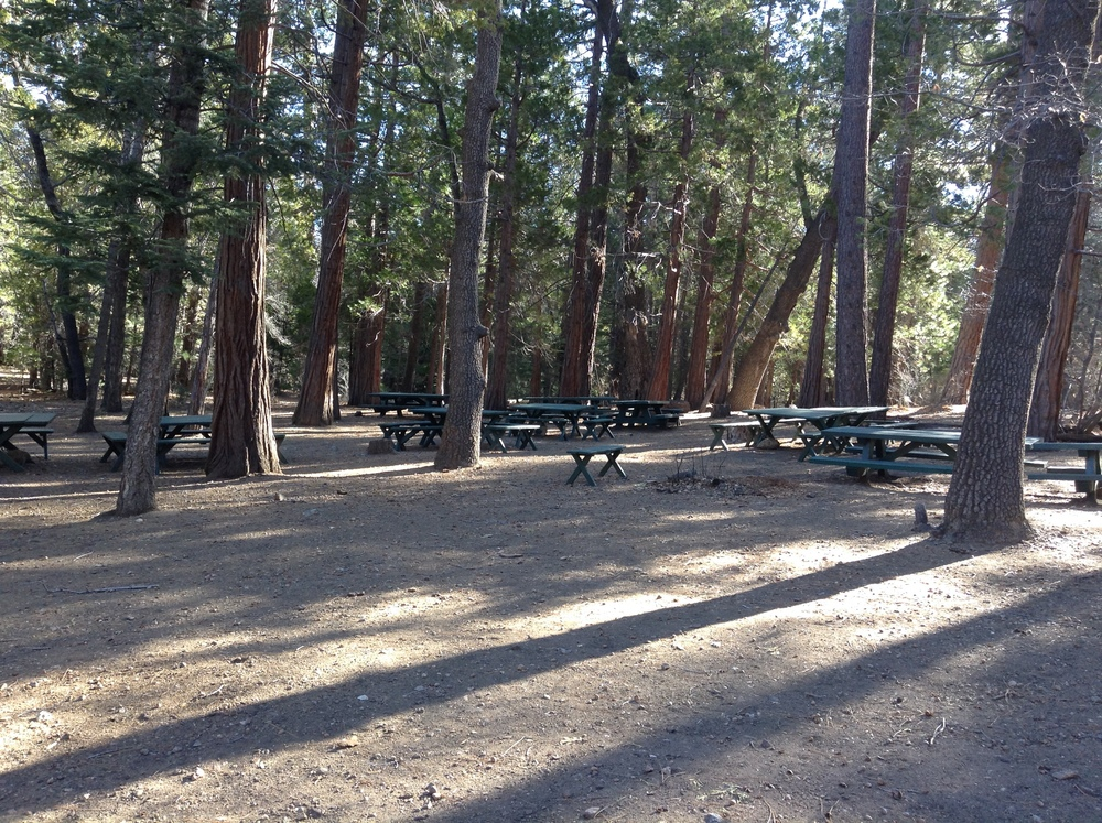 Jenks Lake Picnic Area