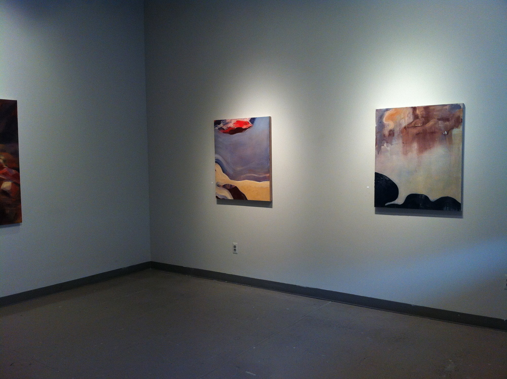 Swimming Hole. Solo show, 2014. Medici Gallery, UNL, Lincoln, NE.