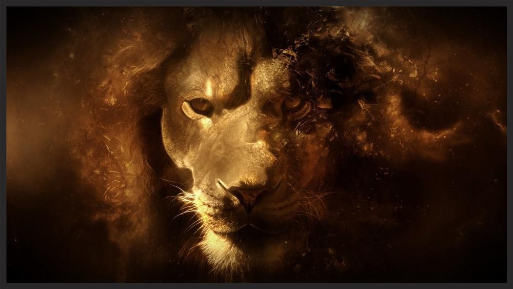 Lion Image Title