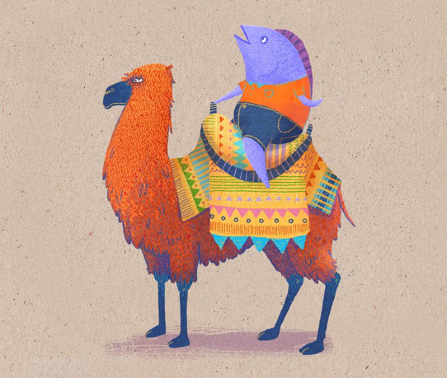 camel_905.jpg