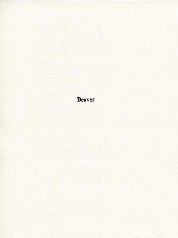 beaver1.jpg