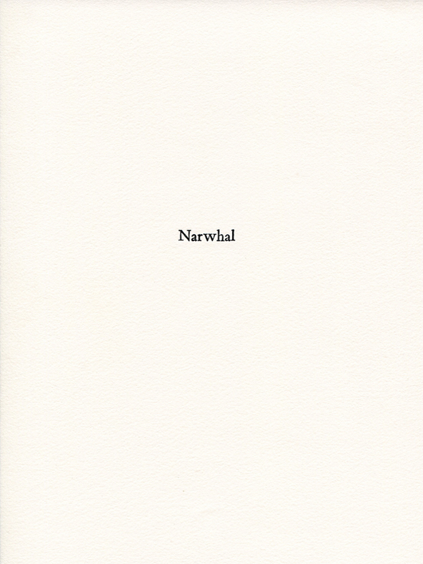 narwhal1.jpg