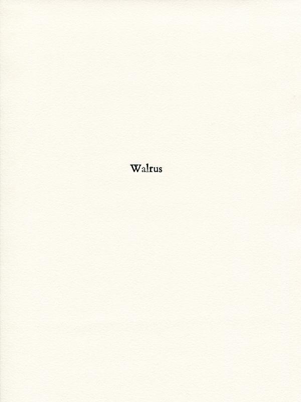 walrus1.jpg