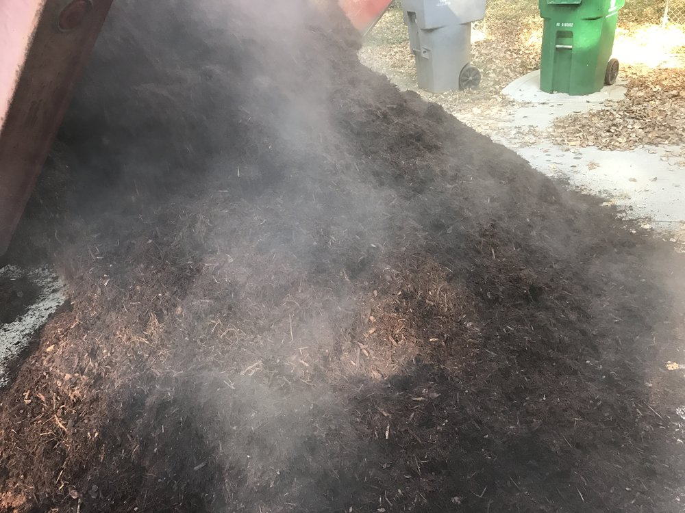 Look at all that steam! This is well-aged, potent mulch.