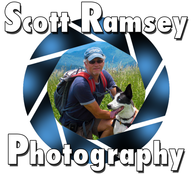 Scott Ramsey Photography