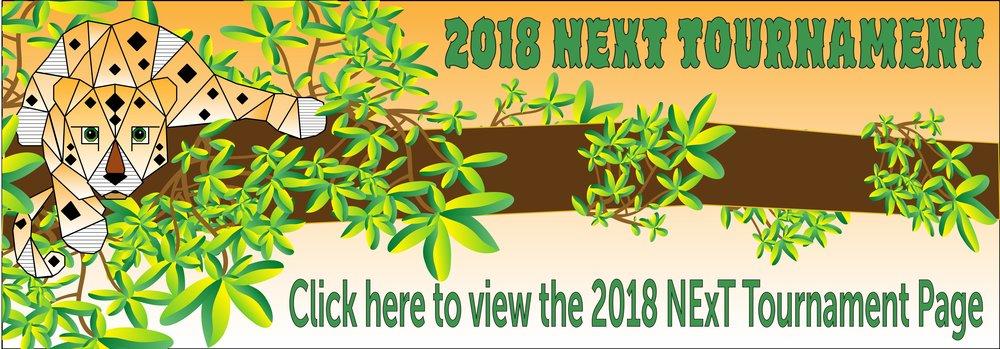 2018 Tournament Page Banner-04.jpg