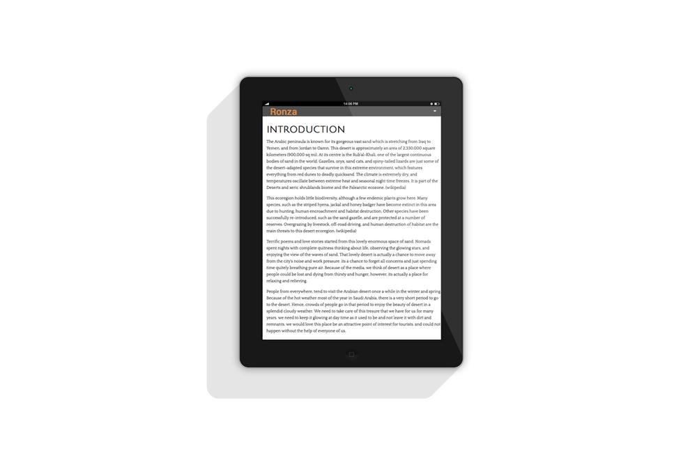 iPad-5-Ronza1.jpg
