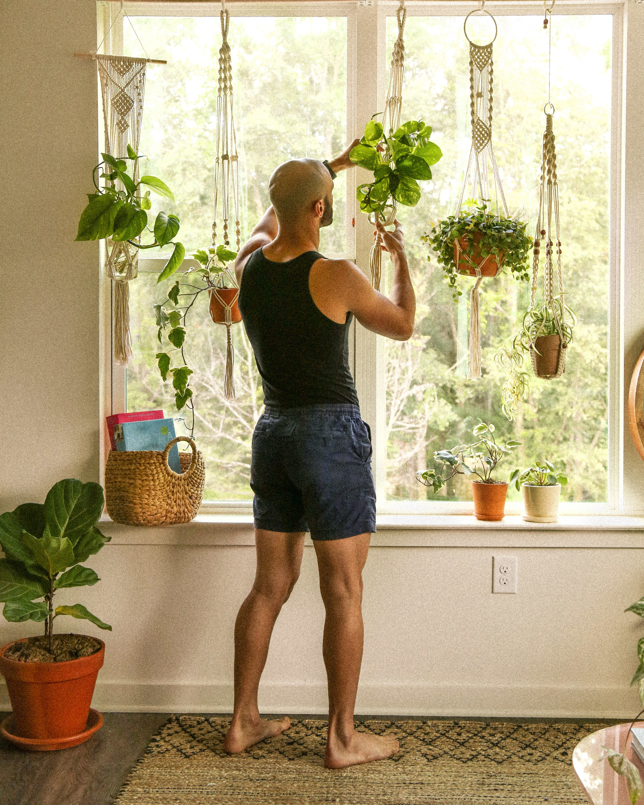 Diy Adjustable Plant Window Renter Friendly Probably This