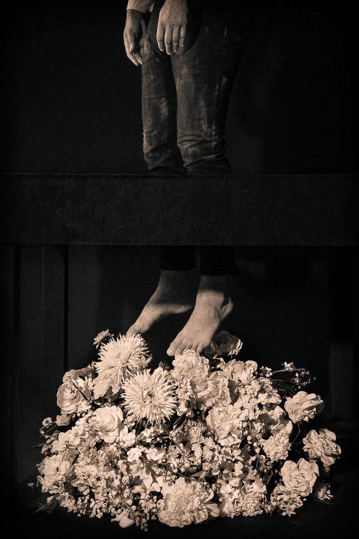 apotheosis , 2013