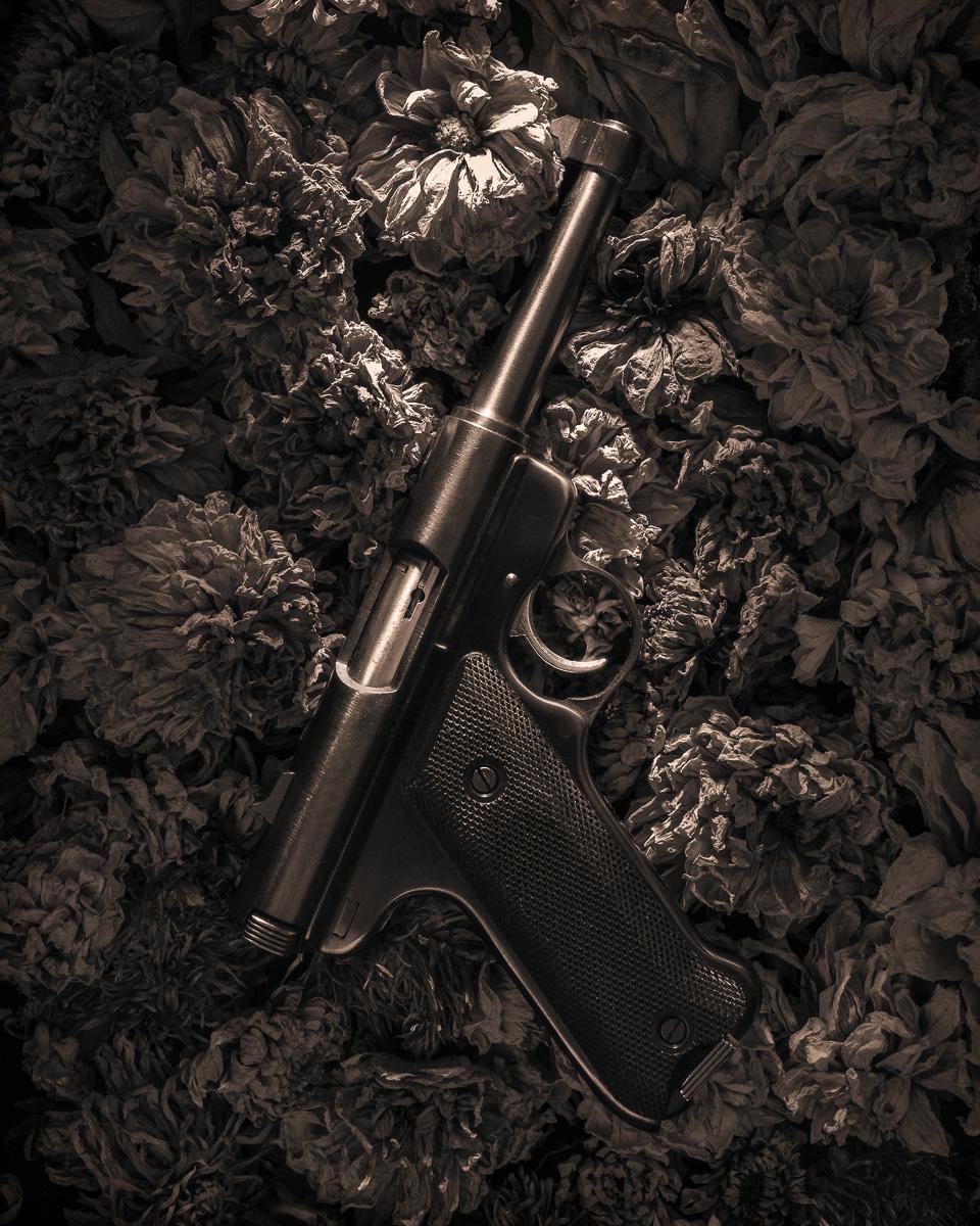 guard's gun , 2013