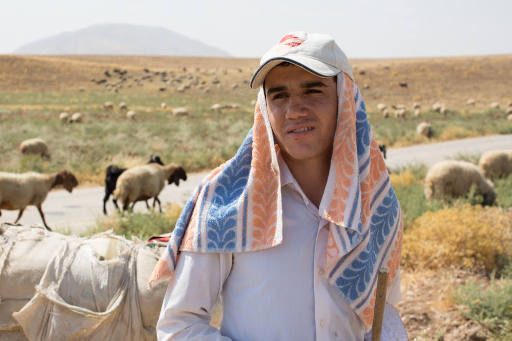 """I'm a student. My parents didn't want me sitting around the house all summer, so they made me be a shepherd."" (Kalak, Iraq)"