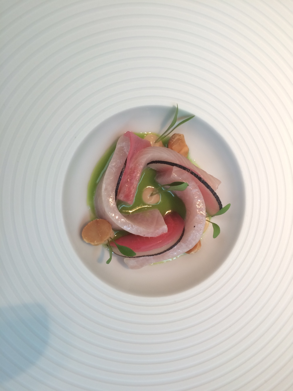 Ceviche of Yellow Fin Mackerel- Coriander and Radish.