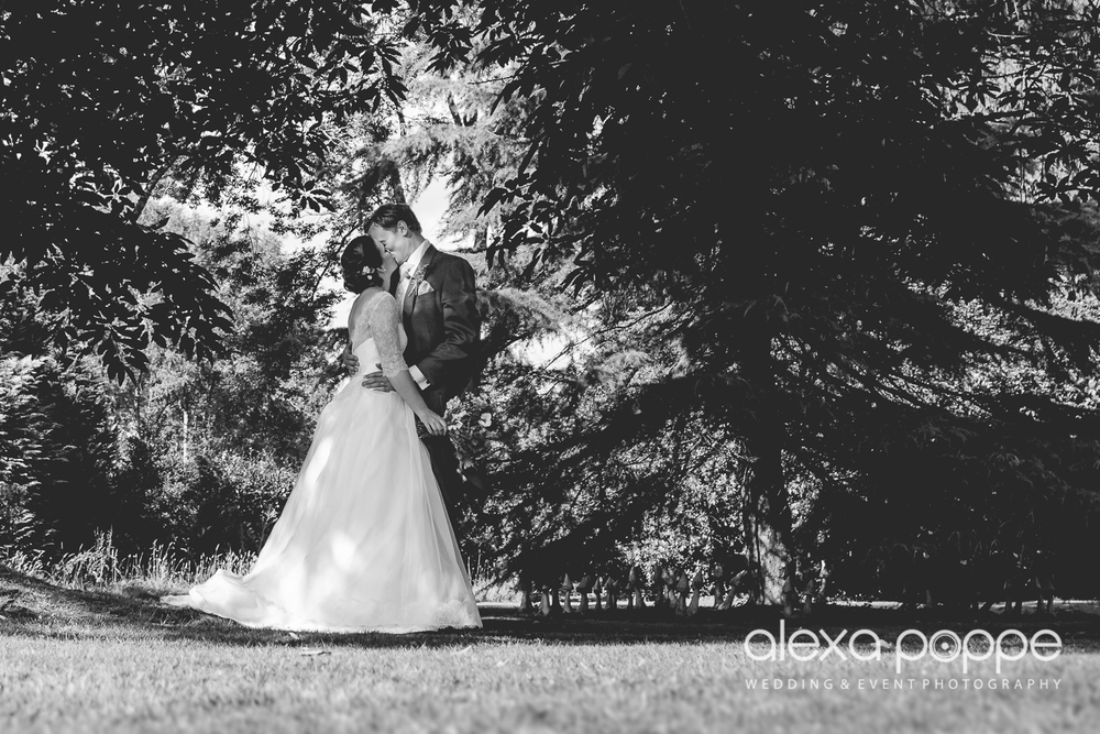 NH_wedding_huntshamcourt_devon-6.jpg