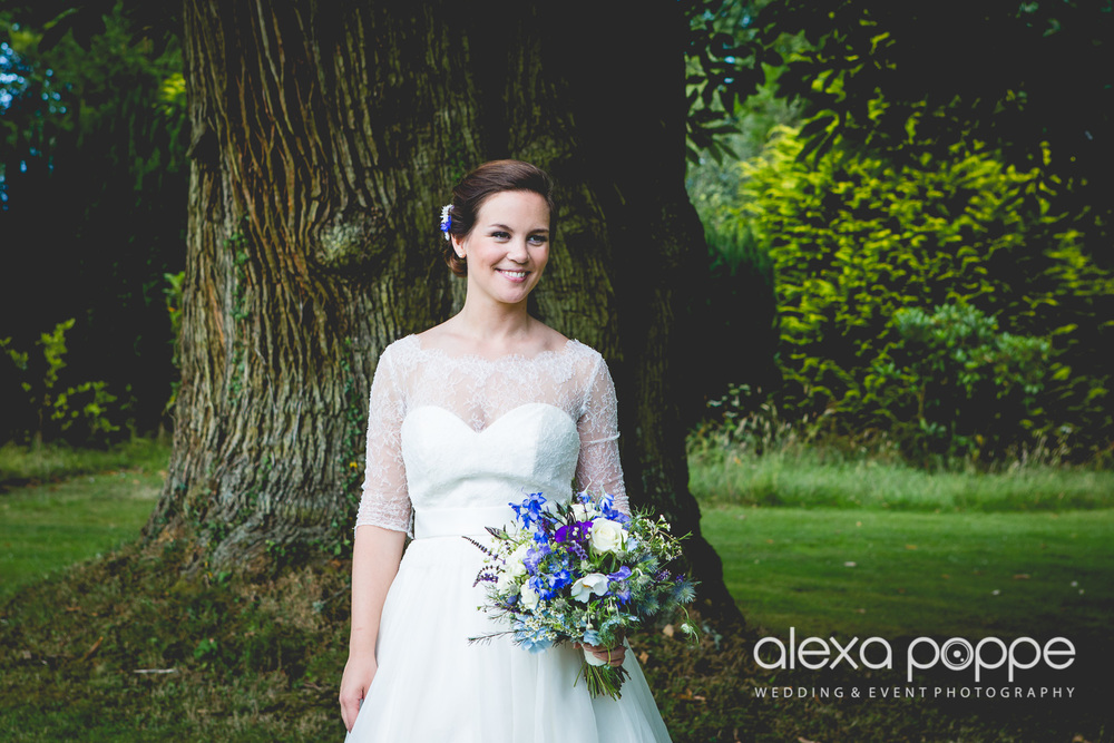 NH_wedding_devon_huntshamcourt-23.jpg