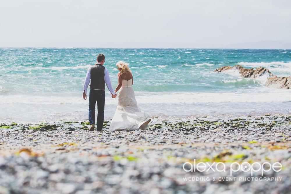 AP_wedding_polhawnfort-2.jpg