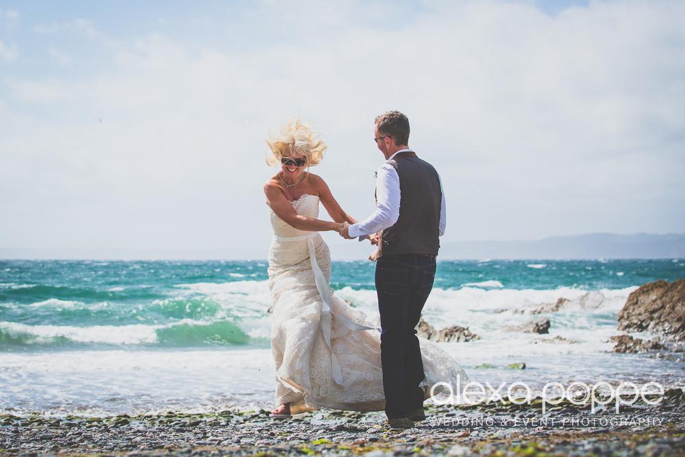 AP_wedding_polhawnfort-4.jpg