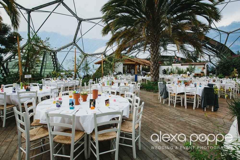 DM_wedding_edenproject-64.jpg