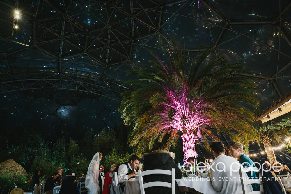 DM_wedding_edenproject-94.jpg