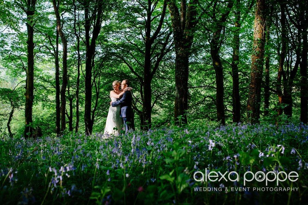 LJ_wedding_trevenna-153.jpg
