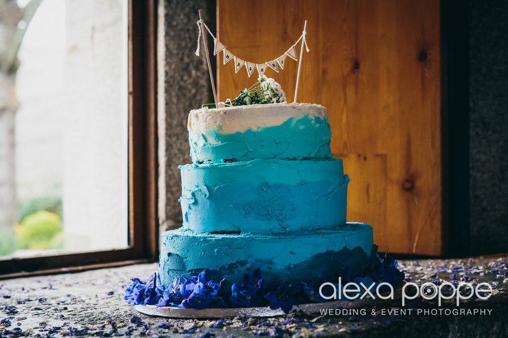 LI_wedding_polhawnfort-9.jpg