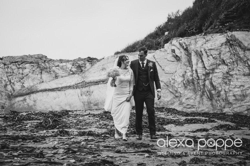 LI_wedding_polhawnfort-32.jpg