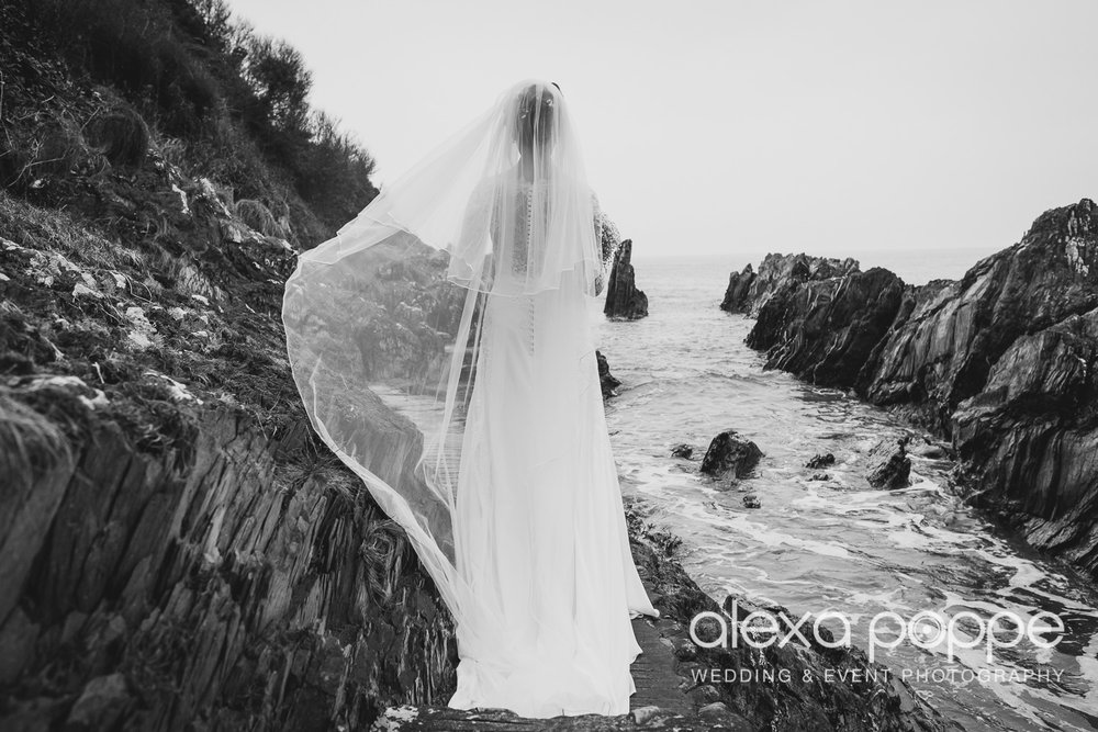 LI_wedding_polhawnfort-33.jpg