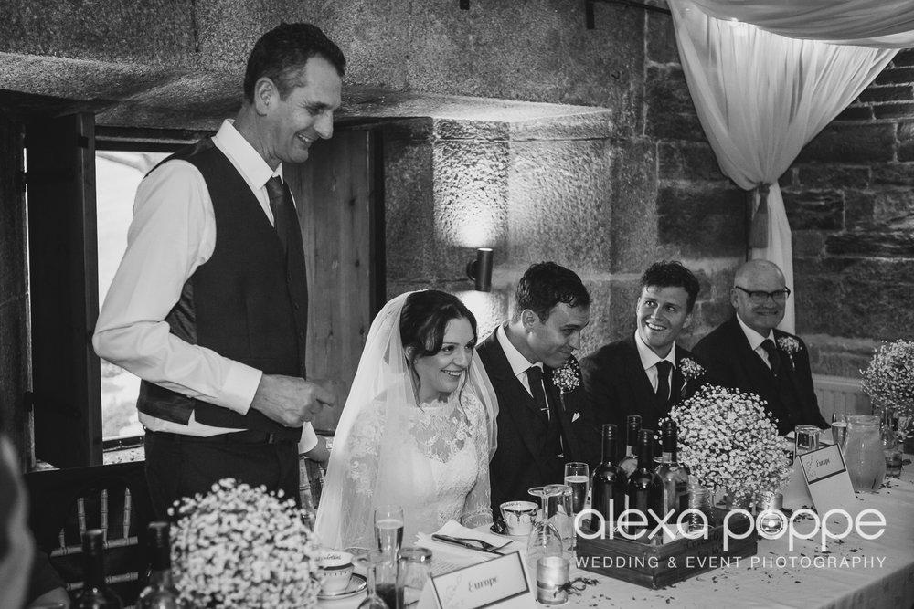 LI_wedding_polhawnfort-34.jpg