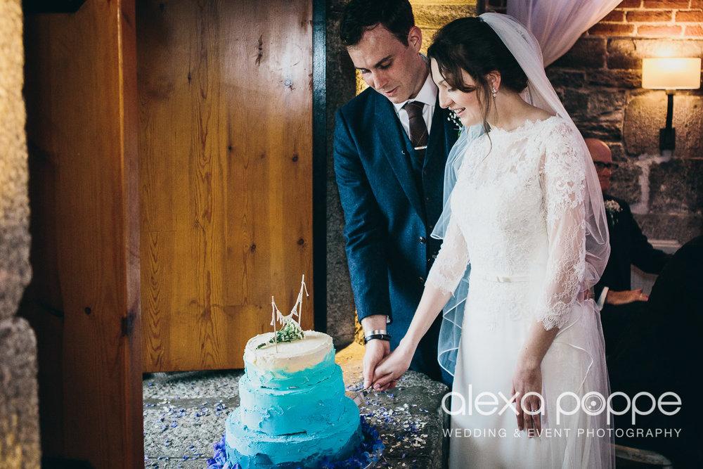 LI_wedding_polhawnfort-37.jpg