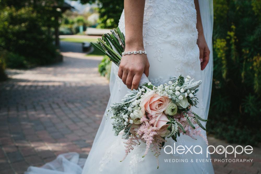 DC_wedding_edenproject-48.jpg