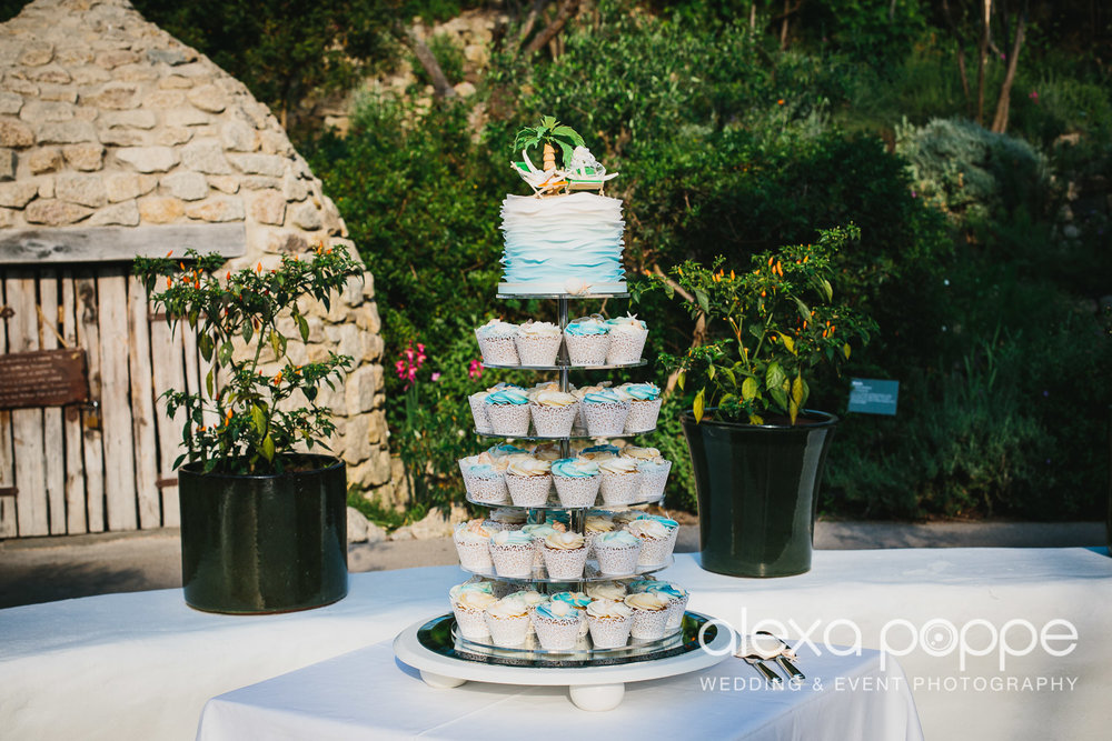 DC_wedding_edenproject-60.jpg