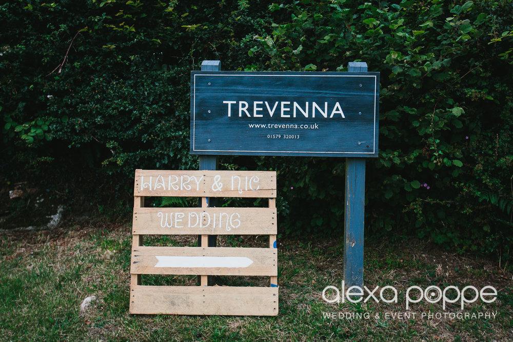 NH_wedding_Trevenna_cornwall-1.jpg
