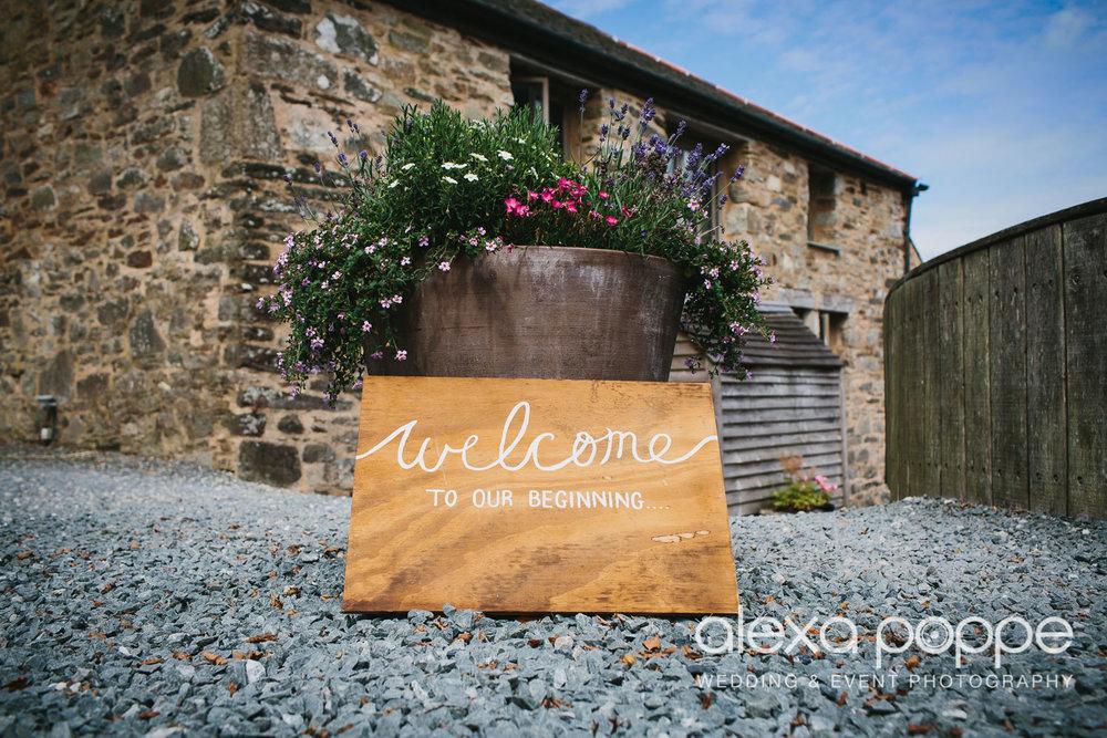 NH_wedding_Trevenna_cornwall-3.jpg
