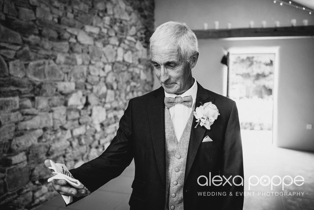 NH_wedding_Trevenna_cornwall-23.jpg
