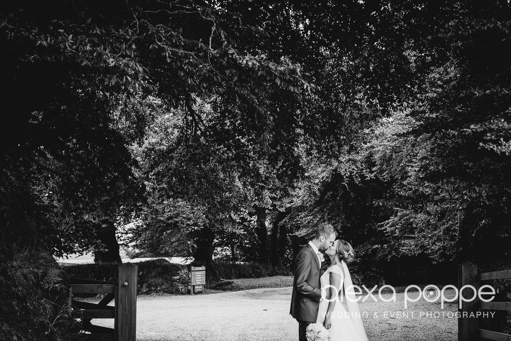 NH_wedding_Trevenna_cornwall-43.jpg