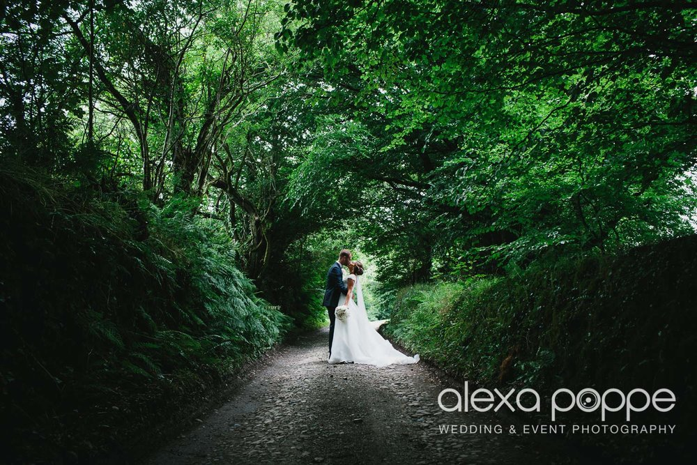 NH_wedding_Trevenna_cornwall-47.jpg