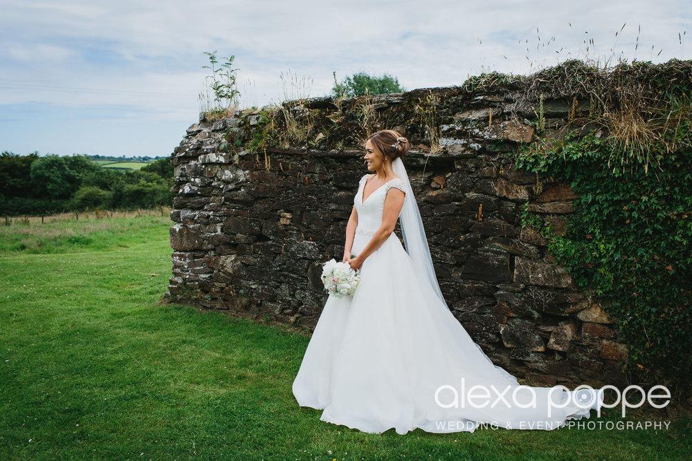NH_wedding_Trevenna_cornwall-52.jpg