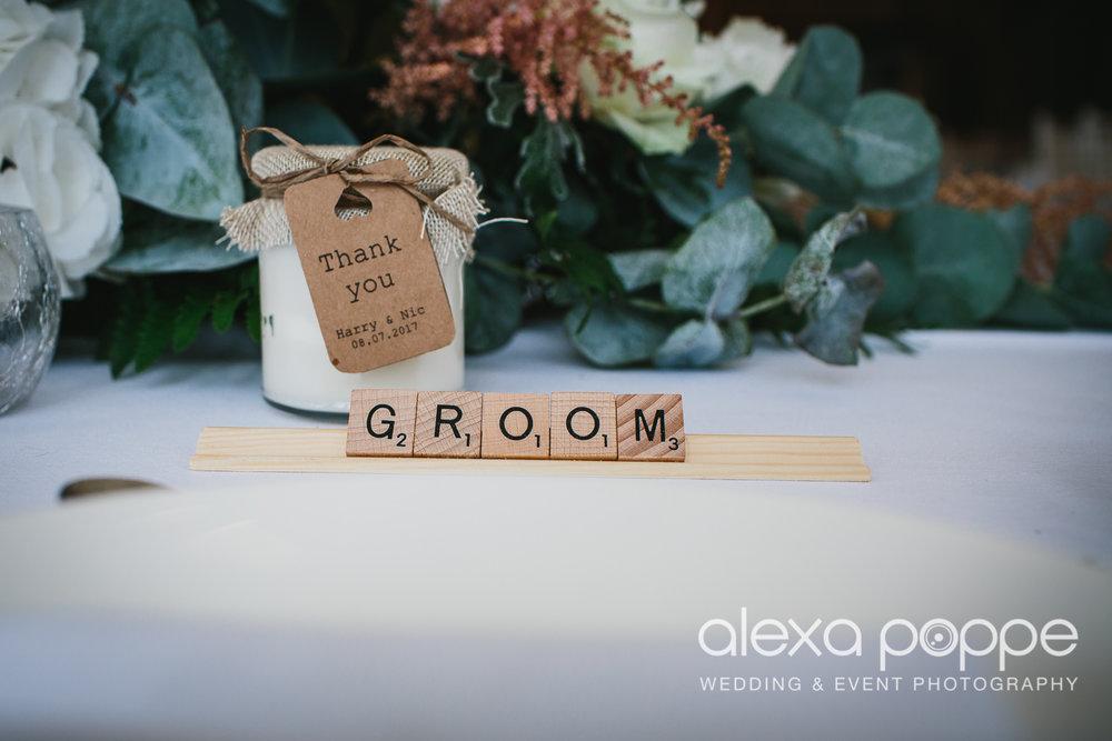 NH_wedding_Trevenna_cornwall-63.jpg