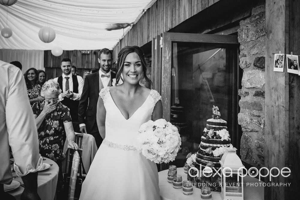 NH_wedding_Trevenna_cornwall-67.jpg