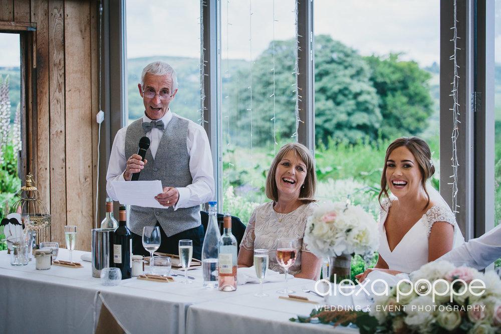 NH_wedding_Trevenna_cornwall-71.jpg
